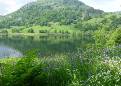 grasmere-silver-fell-holiday-cottage-views11