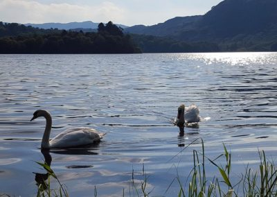 grasmere-silver-fell-holiday-cottage-views17